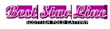 Питомник шотландских кошек «Best Star Line»