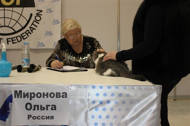 Romeo Москва 3