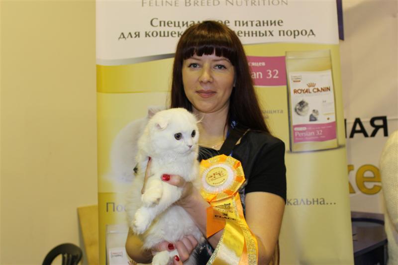 Shovalon Tara Reid Воронеж 2